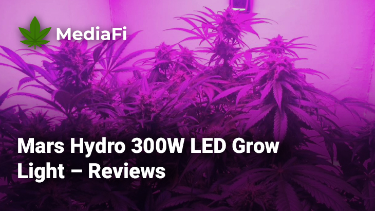 Mars Hydro 300W LED Grow Light – Reviews