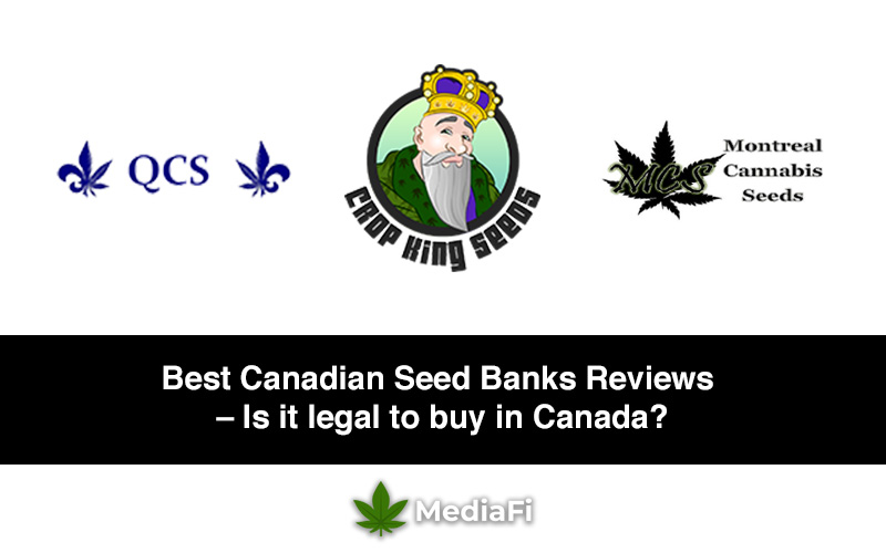 Best Canadian Seed Banks Reviews