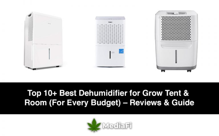 Best Dehumidifier for Grow Tent & Room