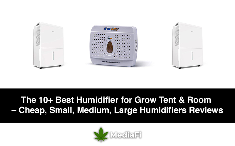 Best Humidifier for Grow Tent & Room