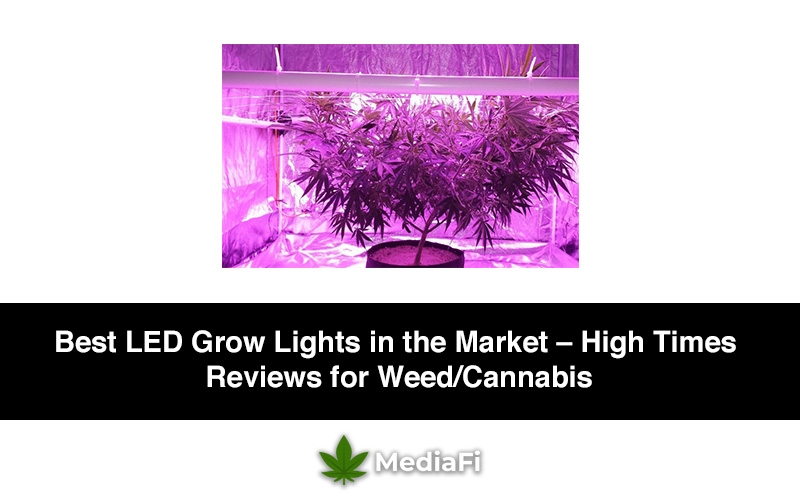 Best Led Grow Lights 2020 In The Market High Times Reviews For Weed Cannabis Mediafi