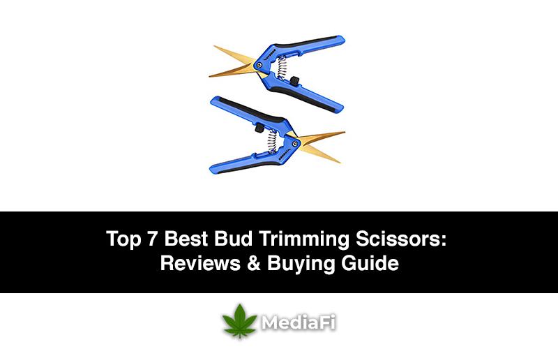 Best Bud Trimming Scissors For Marijuana Plants