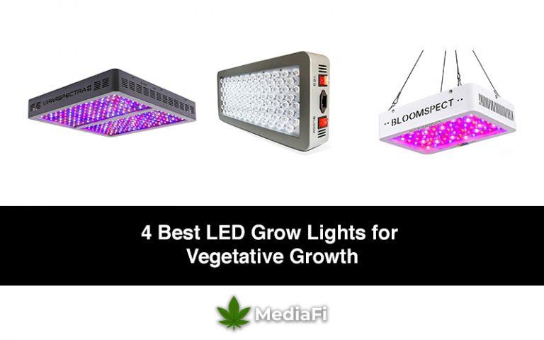 Best LED Grow Lights for Vegetative Growth