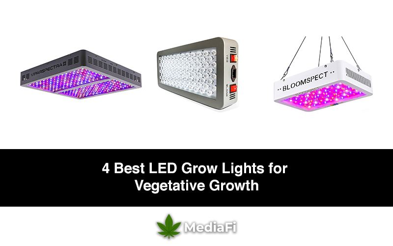 Best LED Grow Lights for Vegetative Growth
