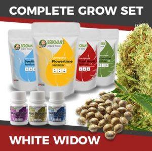White Widow Kit