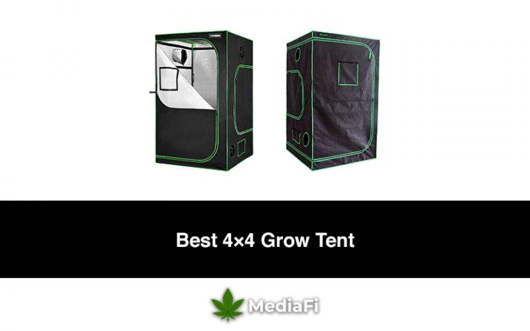 Best 4×4 Grow Tent