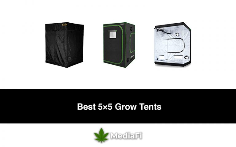 Best 5×5 Grow Tents