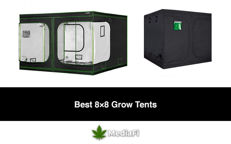 Best 8x8 Grow Tents