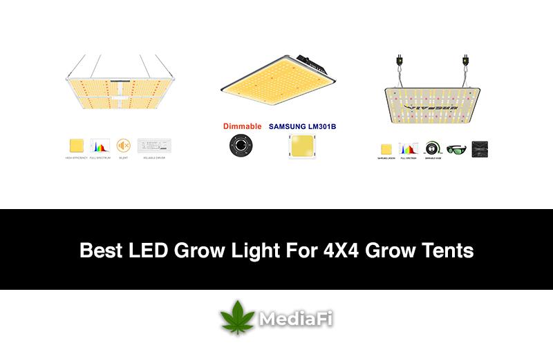 Best LED Grow Light For 4X4 Grow Tents