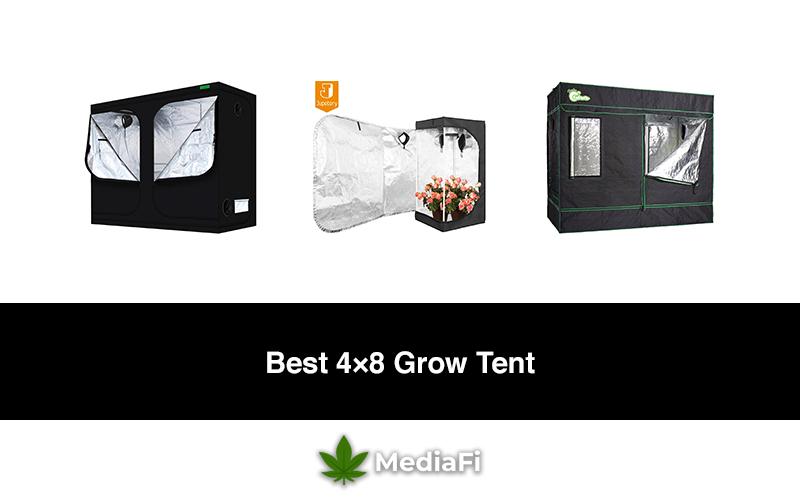 Best 4×8 Grow Tent