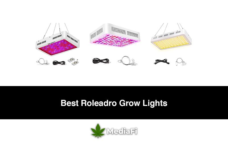 Best Roleadro Grow Lights