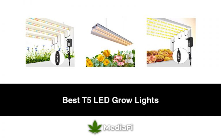 Best_T5_LED_Grow_Lights[1]